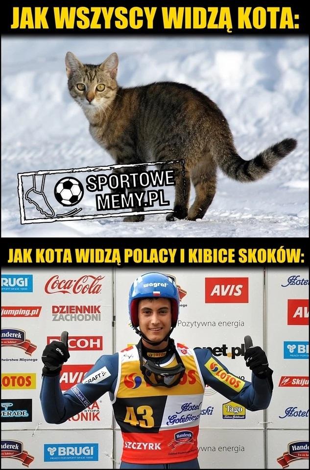 Jak wszyscy widzą kota vs jak Kota widzą Polacy i kibice skoków
