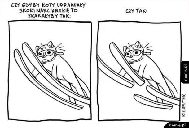 Czy gdyby koty uprawiały skoki narciarskie skakałyby tak czy tak?